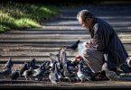 İyilik, Kötülük ve Sevap Kazanmak | Ha-Mim