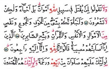 Allah Yolunda Öldürülenler İçin Ölü Demeyin | Ha-Mim