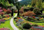 Viraneye Dönüşen İki Bahçe | Ha-Mim