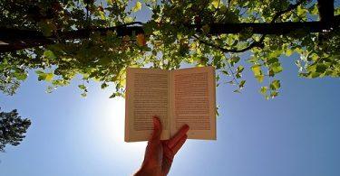 Kur'an'ı Tasdik Etmek Üzere Okumak | Ha-Mim