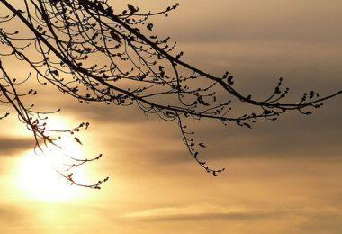 Allah'ın Rızası Ne Demek ve Neden Önemli? | Ha-Mim