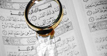 Nefsin Yaratılmasının Hikmeti | Ha-Mim