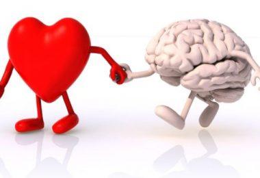 Akıl ile Kalb Arasında Açılan Berzahî Yola Dair | Ha-Mim