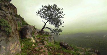 Eğiten Yaratıcı | Ha-Mim