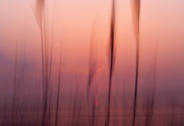 Melekler 9: Gördüğümüz Varlıklar Melek midir? | Ha-Mim