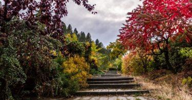 Yaratıcımın Görevlendirdiği Elçiye (Resule) İhtiyacım Var mı? | Ha-Mim