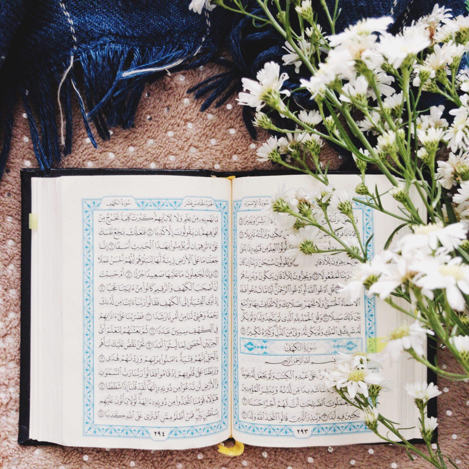İnsanî İhtiyaçların Sürekliliği yahut Kur'an'ın Tazeliği | Ha-Mim